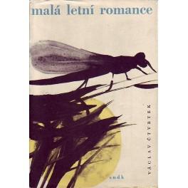 Malá letní romance