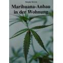 Marihuana-Anbau in der Wohnung