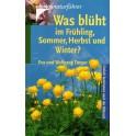 Was bluht im Fruhling Sommer, Herbst und Winter?