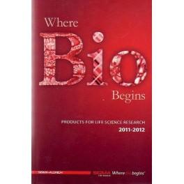 Where Bio Begins