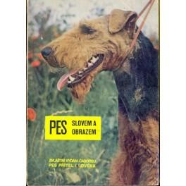 Pes slovem a obrazem (zvláštní vydání Pes přítel člověka-příloha 1969)
